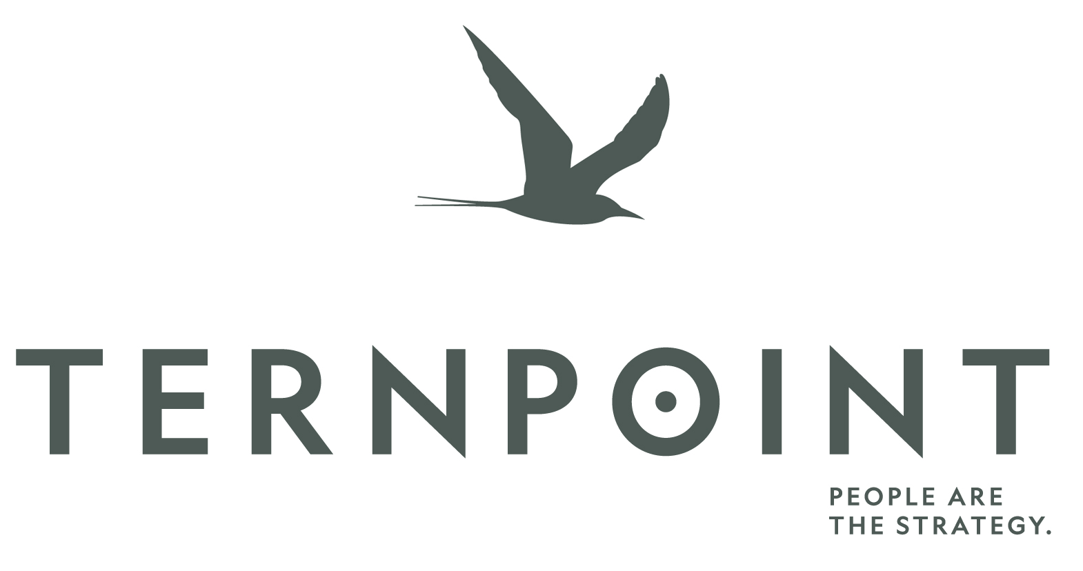 Ternpoint Solutions, LP